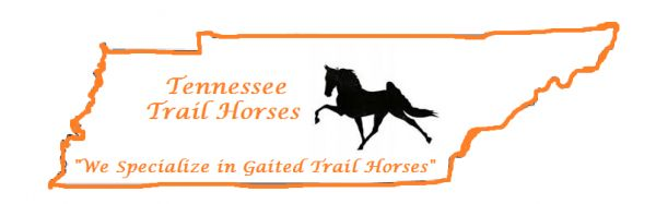 Tennessee Trail Horses