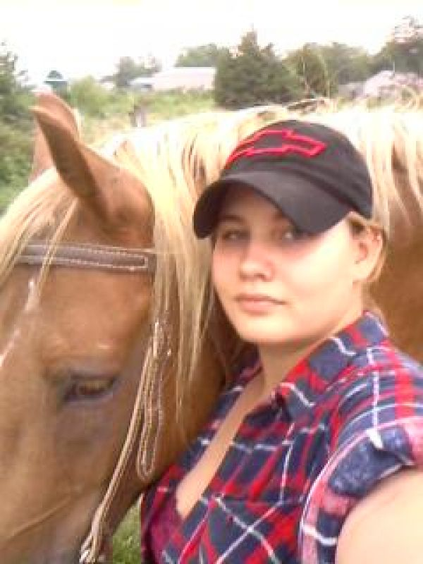 K.C. Horse Training and Riding Lessons