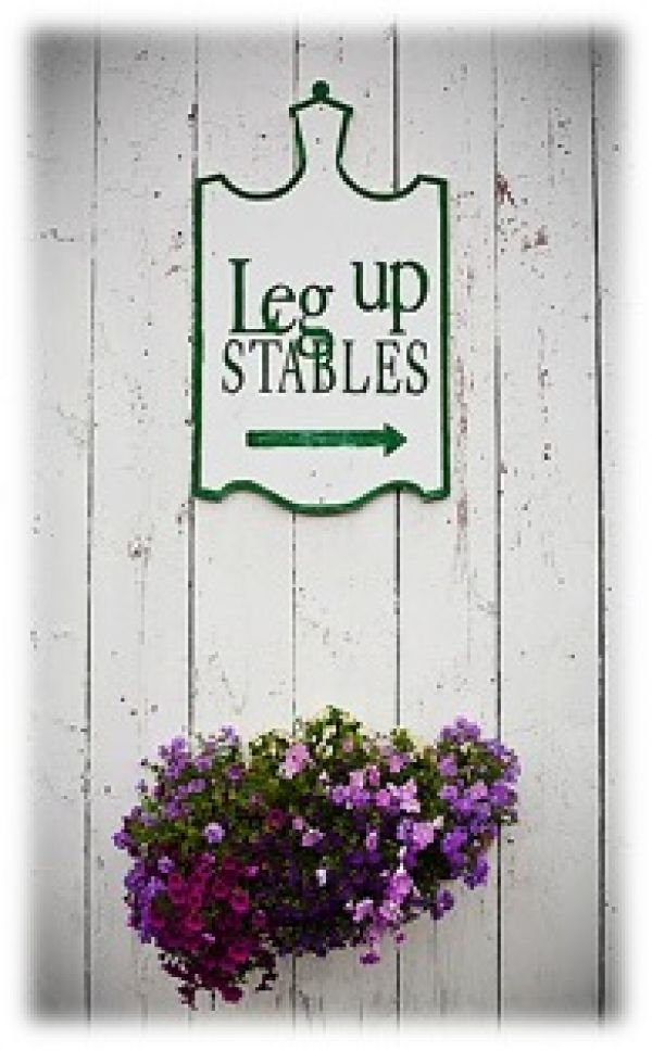 Leg Up Stables