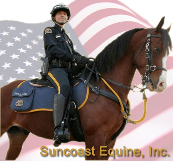 Suncoast Equine Inc at Emerald Oaks Ranch