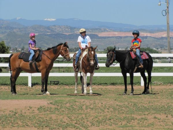 Owl Canyon Horse Services