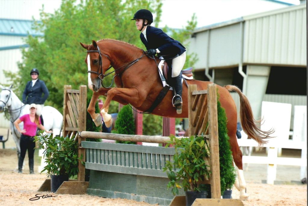 Crooked Creek Farm Equestrian Training LLC