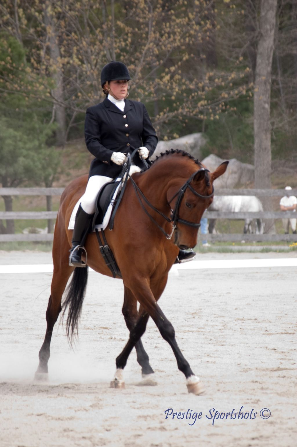 Chrisitna Dunham Dressage - Ride In Stride