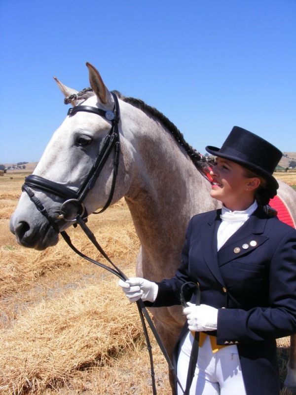 Lyric Dressage Lusitano North West