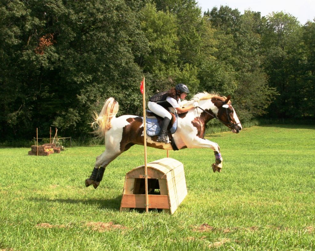 Riding Quest Stables
