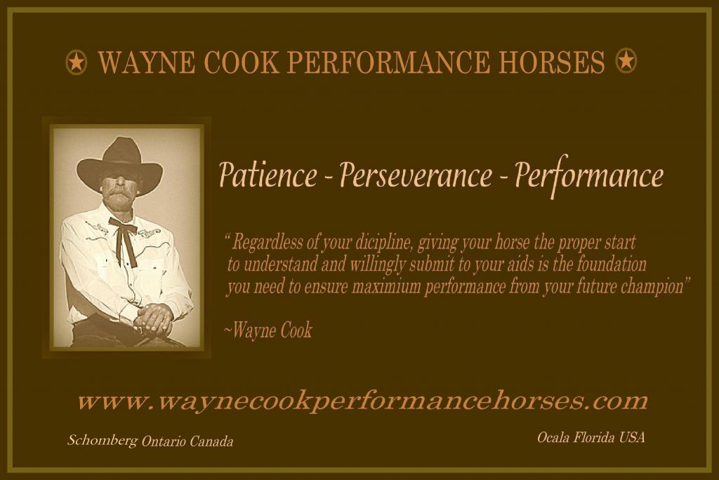 WAYNE COOK PERFORMANCE HORSES