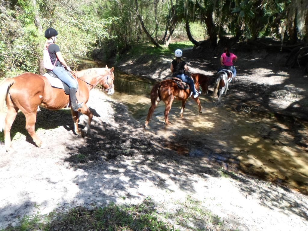 Windsong Farm Summer horse camp lessons Trail ride