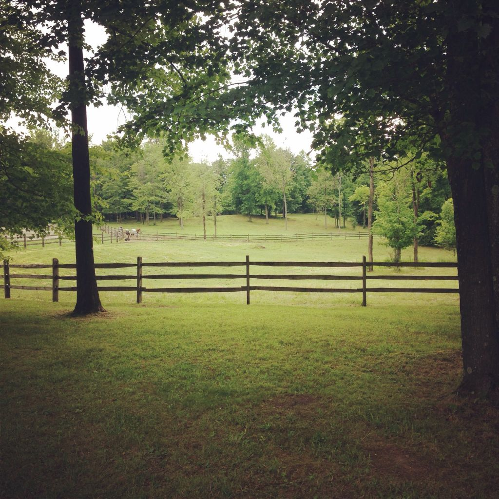 Carpenter Ridge Farm