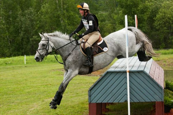 Top Notch Eventing