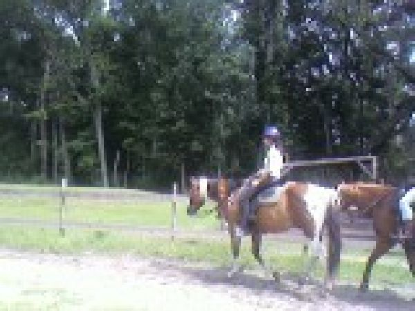 North Fork Equestrian Center