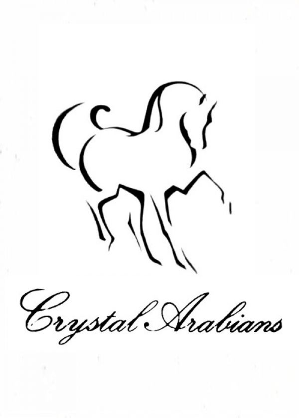 Crystal Arabians at Clementine Farms