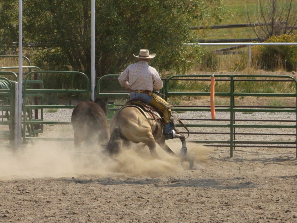 Snaffle Bit Ranch