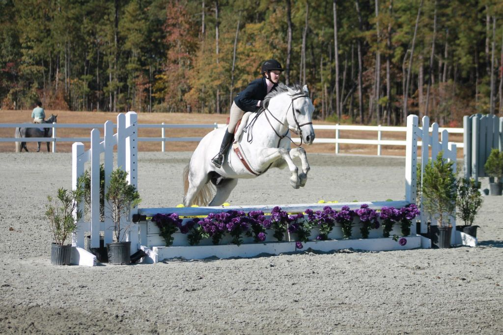 Tally Ho Equestrian Center LLC