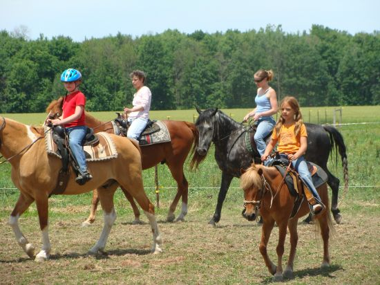 Saddle Up Horse Farm lessons training hoof care an