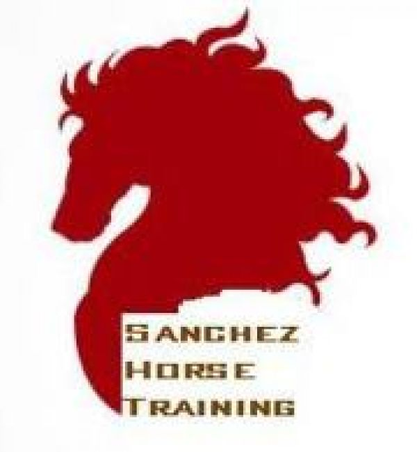 Sanchez Horse Training