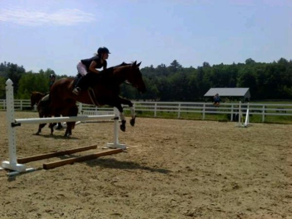 Kimberly Anderson - Equine Professional