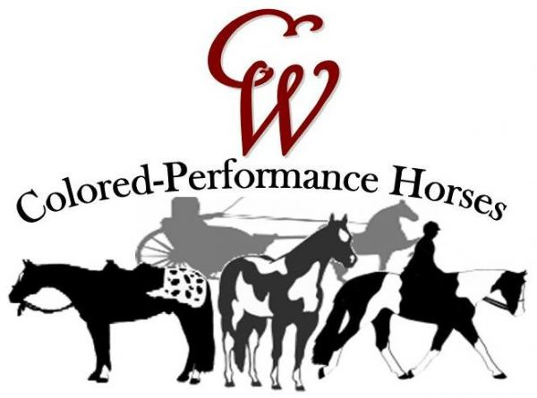 CW Colored-Performance Horses