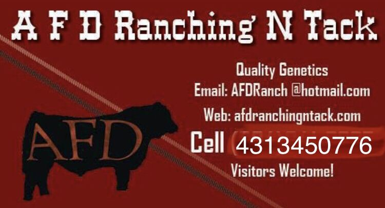 Diamond A Training Center & Tack Supply
