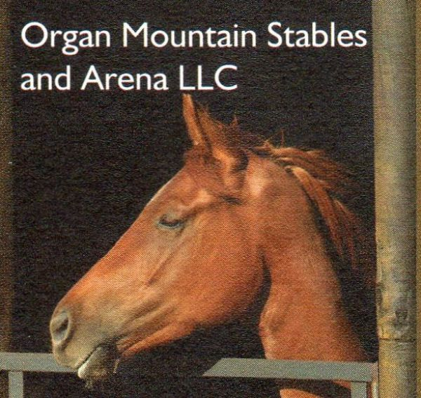 Organ Mountain Stables