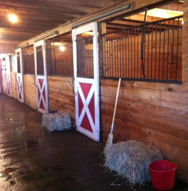 Forelock Stables