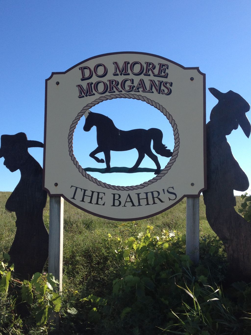 Do More Morgans