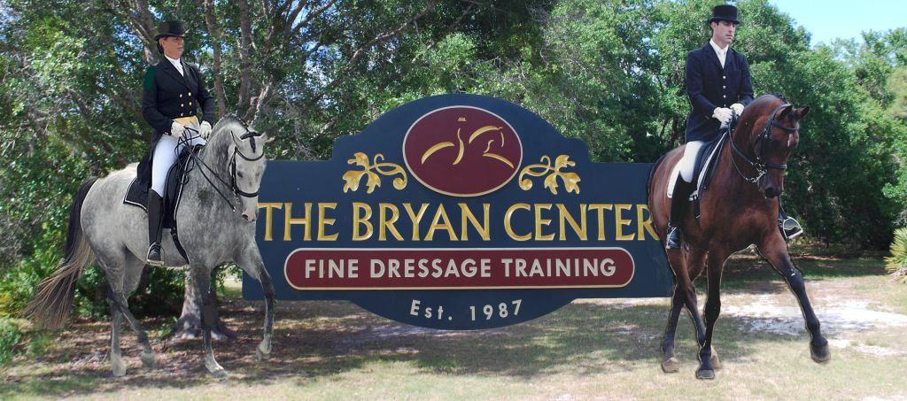 The Bryan Center LLC