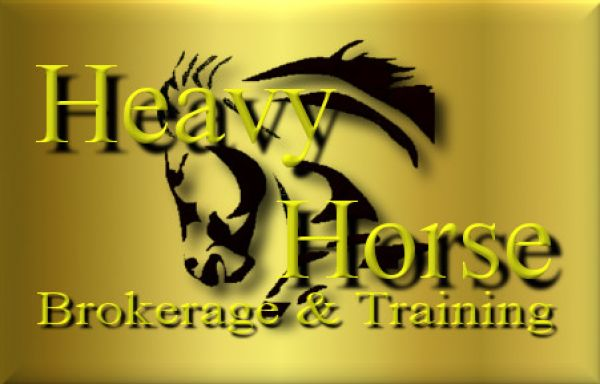 Heavy Horse Equine Brokerage