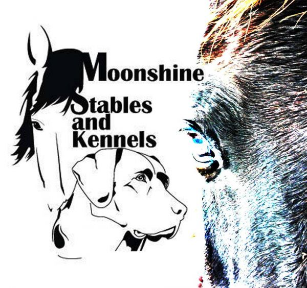 Moonshine Stables and kennels
