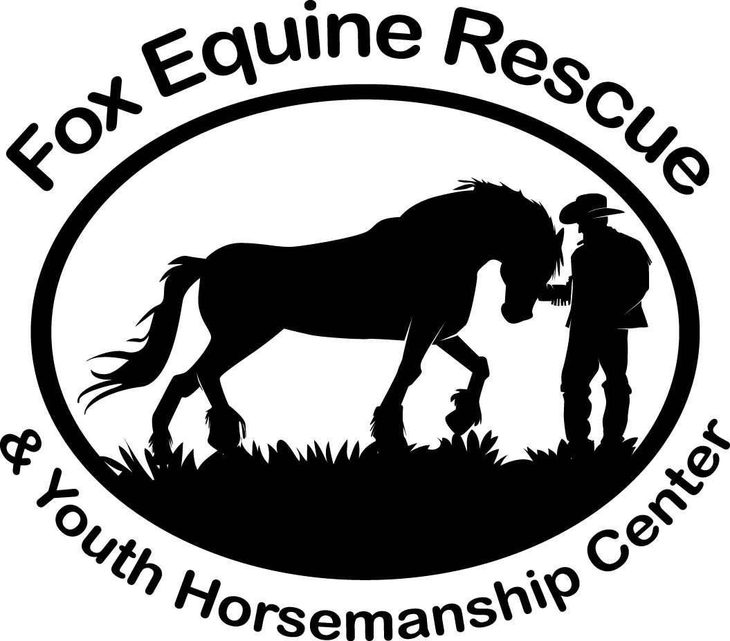 Fox Equine Rescue  Rehabilitation