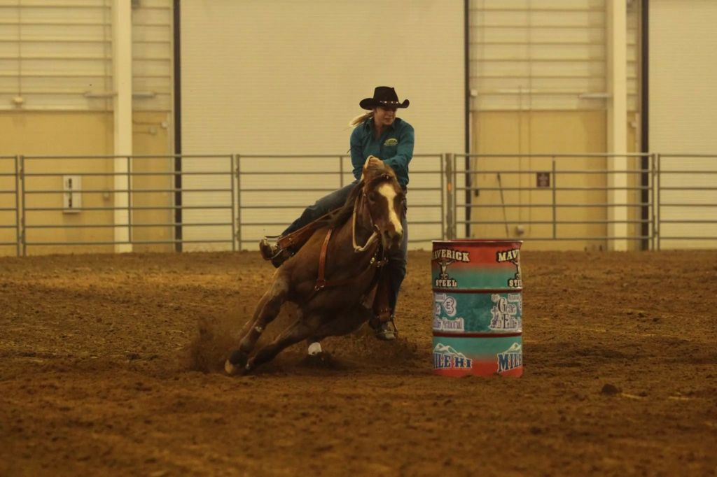 Lynnsey's Lessons and Training in Pierce CO