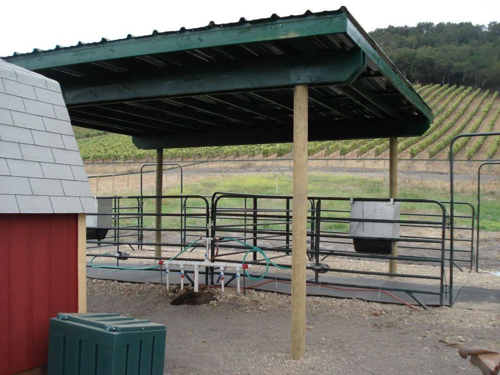 Wine Country Equine Boarding  Sanctury