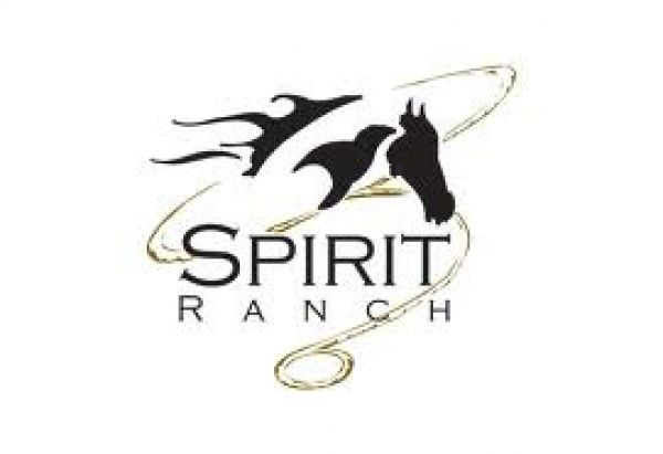 High Spirits Horse Ranch