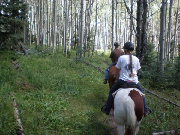 Cream of the Crop Trail Rides
