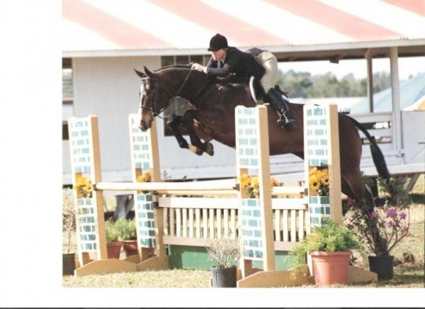 Missy Roades - Hunter Jumper Trainer Instructor an