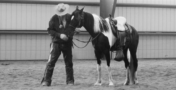 Brooks Gaited Horse Training