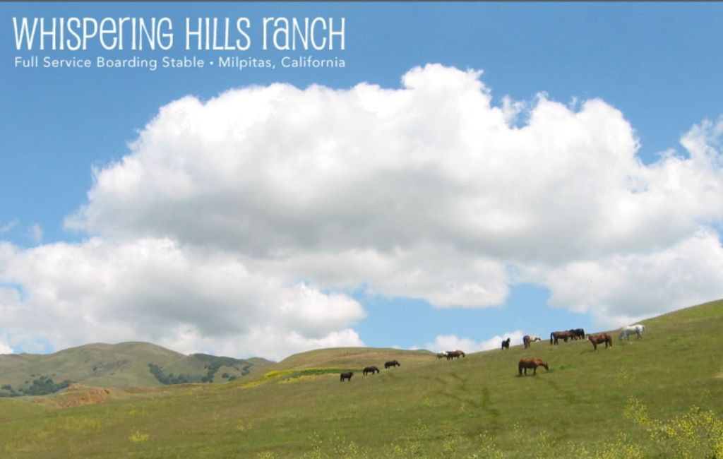Whispering Hills Horse Ranch