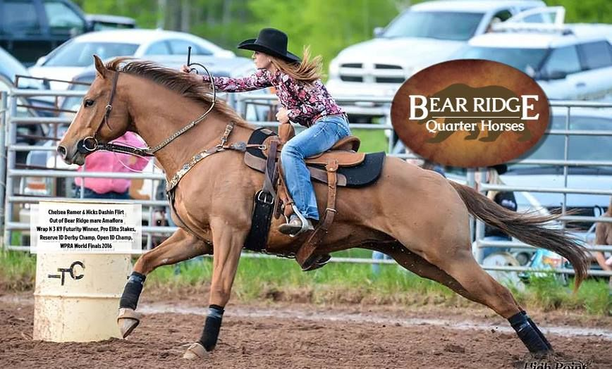 Bear Ridge Quarter Horses