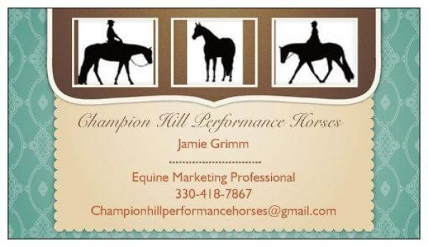 Champion Hill Performance Horses