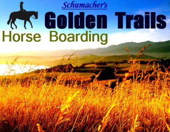 Golden Trails Horse Boarding - Oakland Cty