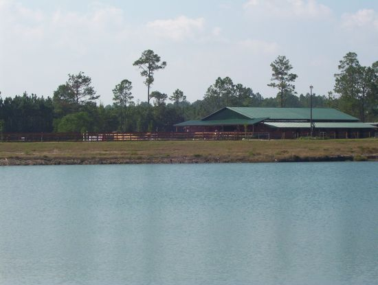 Walker Quarter Horse Farm