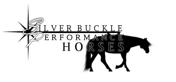 Silver Buckle Horses