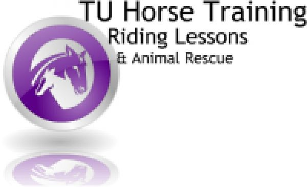 TU Horse Training and Private Riding Lessons
