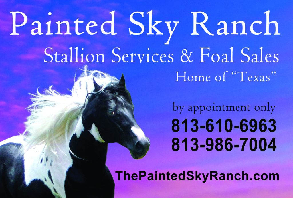 Painted Sky Ranch