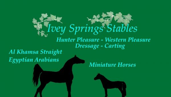 Ivey Spring Stables