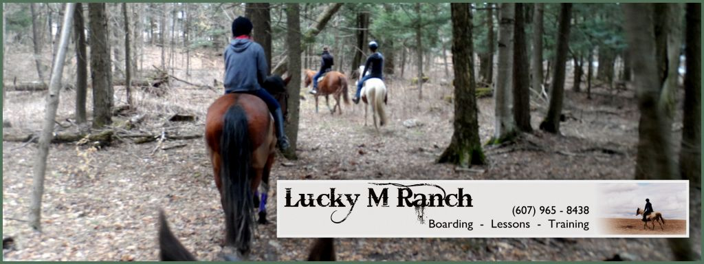 Lucky M Ranch