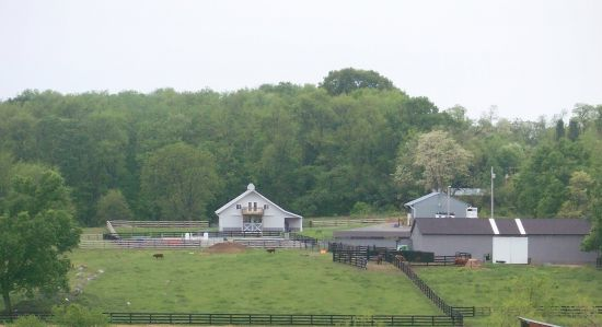 Clarke Haven Stables