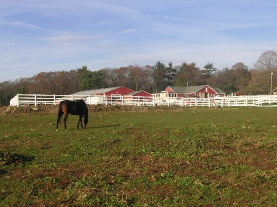 Valley View Riding Stables