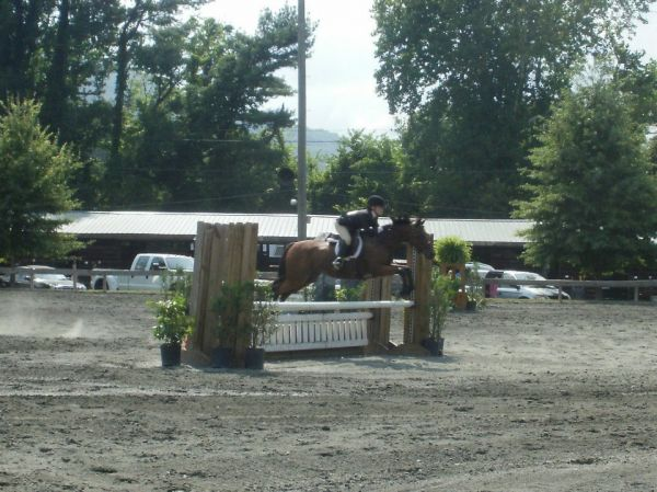 Tennessee Stud and Equestrian Center