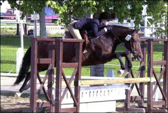 Carlyn Gould - Private Riding lessons - Calgary Re