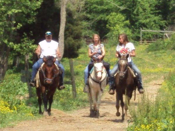 Whispring Woods Riding Stables